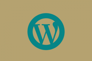 website wordpress KOMTvanPAS